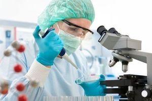 Sida : une nouvelle étude relance la piste de l'immunothérapie