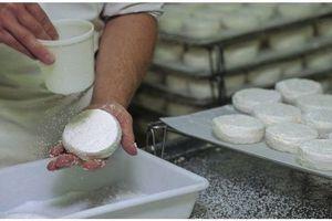 Alerte listeriose : rappel de fromages au lait cru dans la Loire