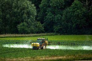 Du nouveau sur le plan de sortie du glyphosate en France