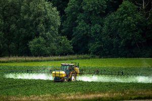 France : le glyphosate interdit pour tous les usages d'ici 2022