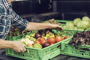 """Alimentation : un rapport prône la création d'un nouveau label """"bio, local et équitable"""""""
