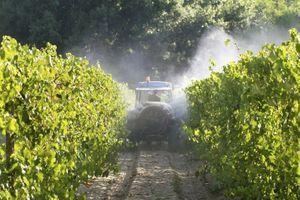 Des liens possibles entre les pesticides et l'autisme