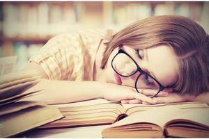 Est-il possible d'apprendre une langue en dormant ?