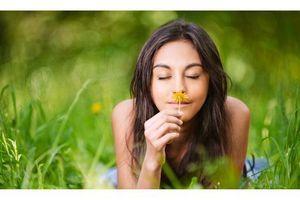 L'odorat affecté lors des épisodes dépressifs sévères
