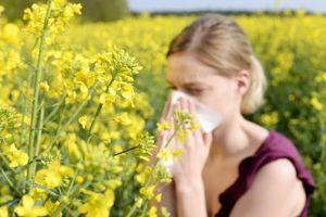 Allergies aux pollens : des risques élevés en Ile-de-France et dans le Nord-Est de la France