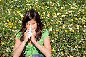 """Allergies : Pr. François-Bernard Michel, """"Mieux vaut apprendre au patient à vivre avec"""""""