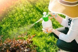 France : l'usage des pesticides a augmenté de 12% entre 2014 et 2016