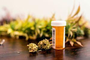 Cannabis médical : l'ANSM donne son feu vert pour une expérimentation