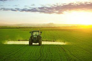 Chlorpyrifos : un insecticide toxique toujours autorisé en Europe