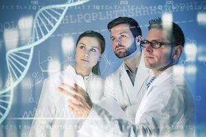 Des manipulations génétiques d'embryons autorisées au Royaume-Uni