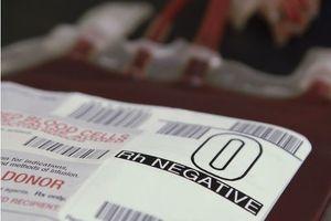 Don de sang : une découverte pourrait rendre tous les groupes compatibles