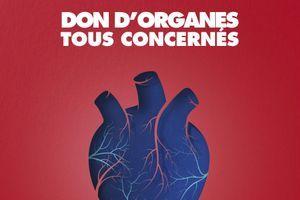Dons d'organes : les mots pour le dire