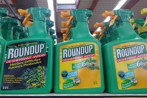 Glyphosate : la justice interdit la vente du Roundup Pro 360