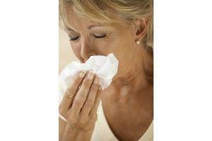 """Grippe mexicaine : """"Attrapez-la, jetez-la à la poubelle et  tuez-la !"""""""