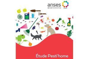 L'Anses veut évaluer l'exposition aux pesticides utilisés à la maison