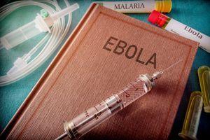Le virus Ebola en RDC se propage à une vitesse accélérée selon la Croix-Rouge