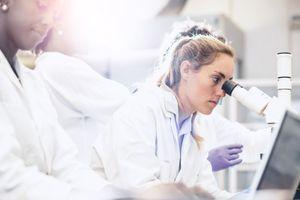 Les Etats-Unis coupent les fonds publics pour la recherche sur les tissus foetaux
