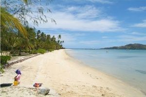 Moustiques, chaleur, soleil : les conseils indispensables pour les voyageurs