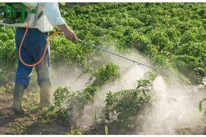 Pesticides : Les sénateurs dénoncent des risques sous-évalués