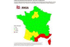 Pollens : une semaine d'accalmie pour les personnes allergiques