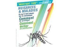 Premier cas isolé de dengue en France métropolitaine