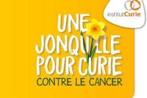 Une jonquille pour Curie : mobilisons-nous contre le cancer