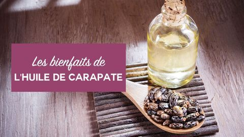 bienfaits huile de carapate
