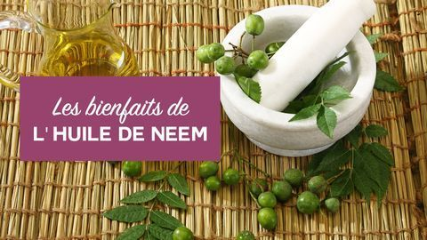 bienfaits huile de neem