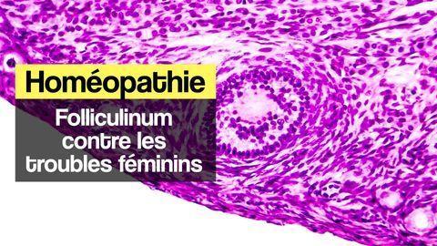 folliculinum homéopathie