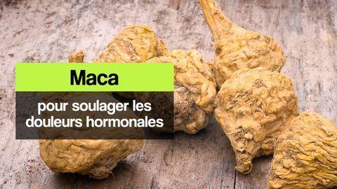 maca hormones