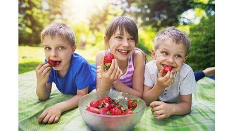 Alimentation des jeunes