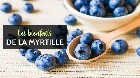 myrtille bienfaits