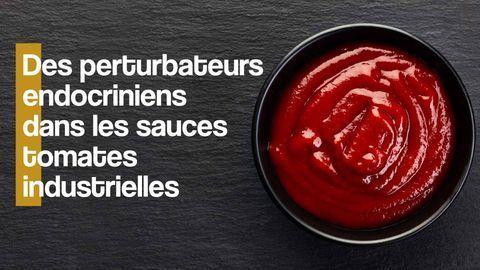 perturbateurs endocriniens sauce tomate industrielle