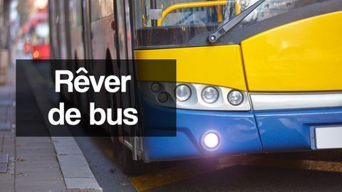 rever de bus interpretation