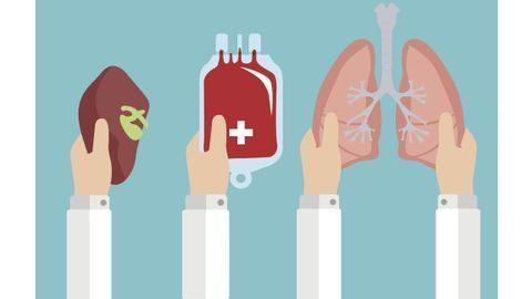 dons-organes