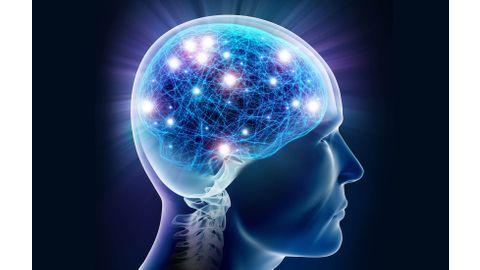 maladies-neurologiques