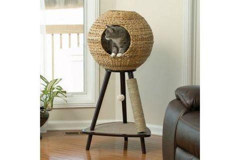 Arbre à chat : 25 modèles originaux repérés sur Pinterest