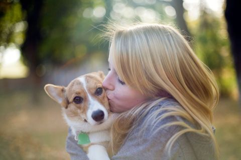 Pourriez-vous adopter un animal ?