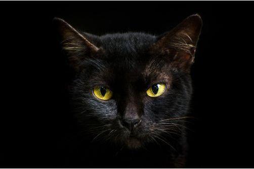 Etes-vous superstitieux ?