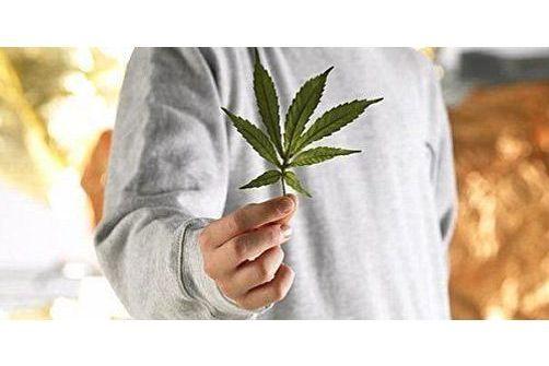 Test Auto-évaluation de sa consommation de cannabis