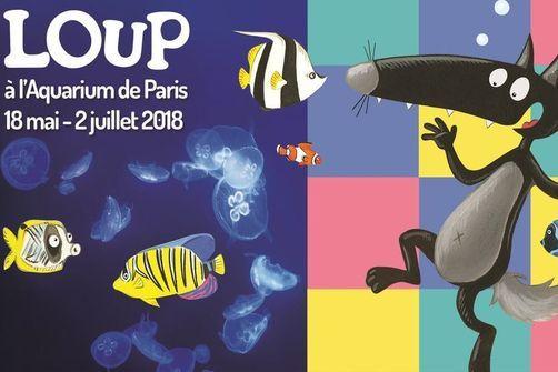 Loup Preserve Les Oceans Debarque A L Aquarium De Paris