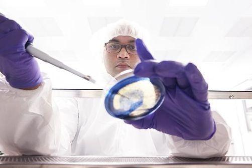 résistance aux antimicrobiens