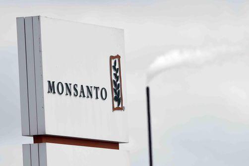 """Des OGM dans des semences de colza, """"étonnement"""" de syndicats agricoles"""