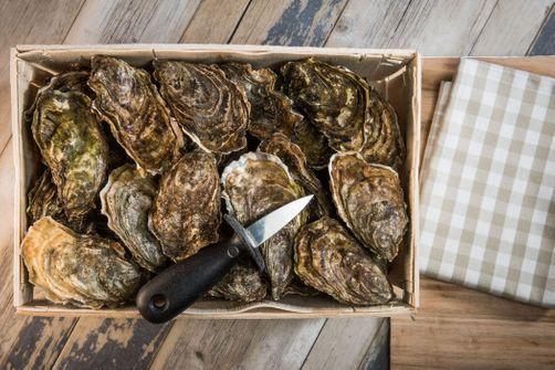 Rappel d'huîtres contaminées aux salmonelles