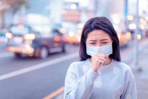 Coronavirus chinois : un outil permet d'estimer le risque d'importation en France