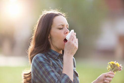 Allergie aux pollens : 26 départements en alerte rouge