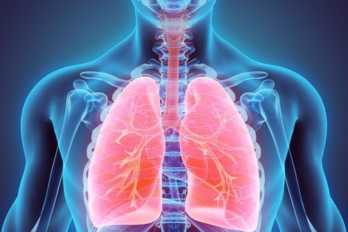 """Résultat de recherche d'images pour """"ORL/ Maladies respiratoires : une trachée artificielle """"sur mesure"""""""""""