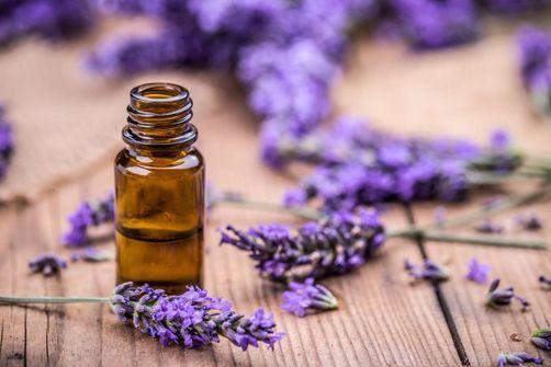 huile essentielle perturbateur endocrinien