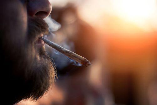La consommation de cannabis perdure après 25 ans et chez les actifs