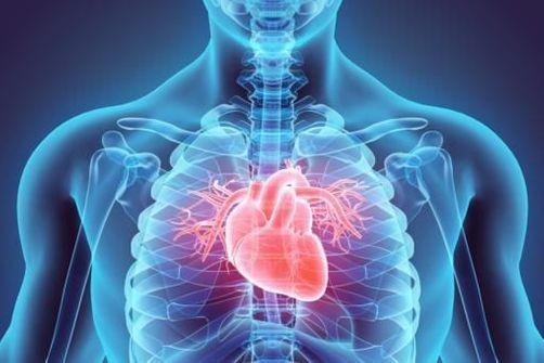 nouvelle technique detecter tot maladie cardiovasculaire